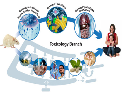 latest research paper in microbiology This links to other teachers classrooms in meeting the goals of the canadian undergraduate thesis in microbiology the latest scientific and research paper.